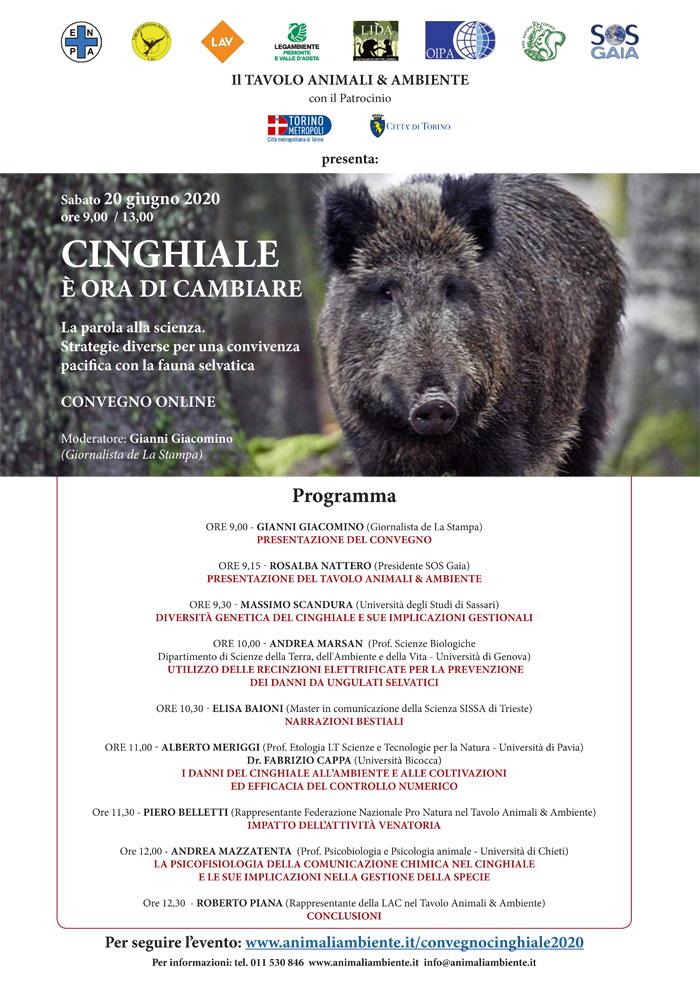 Sabato 20 giugno 2020 - ore 9 - 13  Convegno online:  CINGHIALE, È ORA DI CAMBIARE