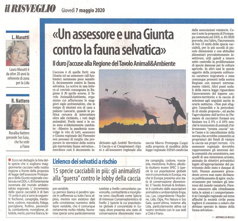 il Risveglio 07-05-2020-un-assessore-e-una-giunta-contro-la-fauna-selvatica