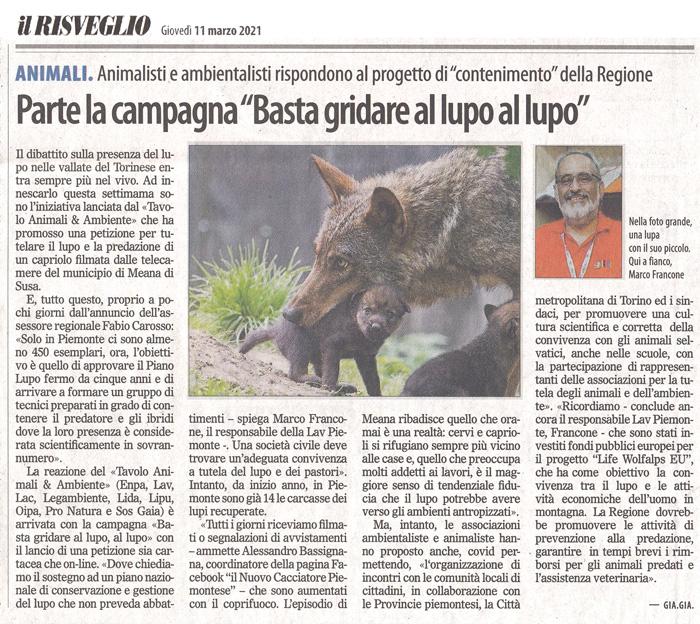 il-risveglio-11-03-2021-salviamo-i-lupi