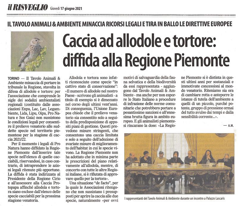 il-risveglio-17-06-2021-caccia-diffida-regione-piemonte