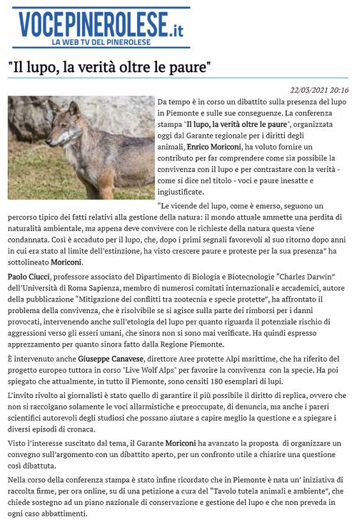 vocepinerolese-22-03-2021-lupo